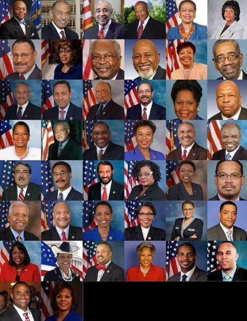 black caucus of the 113th congress